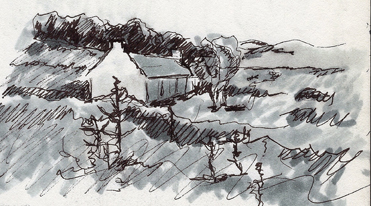 Kat-Dakota-Illustration-Small Landscape